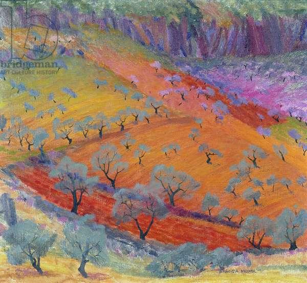 Midday at Alhaurin el Grande, c.1975 (oil on canvas)