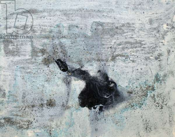 wilkins, 2007, (sea ice from the Antarctica's Ross Sea, sediment from Antarctica's Dry Valleys and mixed media on paper)