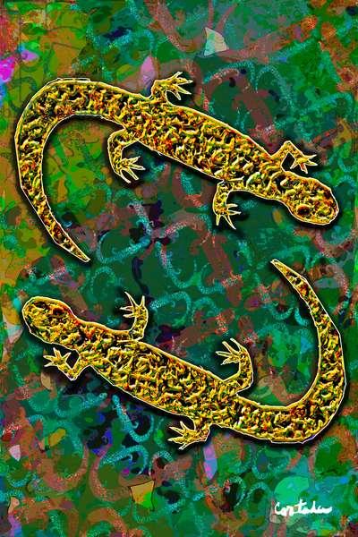Salamanders on Green (edition 1 of 1)