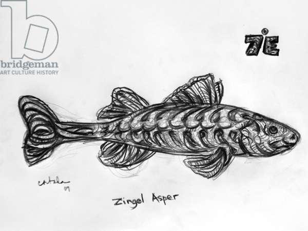 7E Asper, 2009, (graphite on paper)