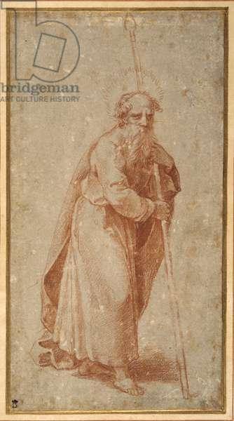 The Twelve Apostles: St. Matthias, 1518-20 (chalk on paper)
