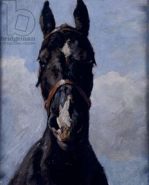 Black Prince (oil on canvas)