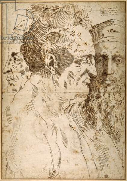 Three male heads juxtaposed (pen & brown ink and black chalk on paper)