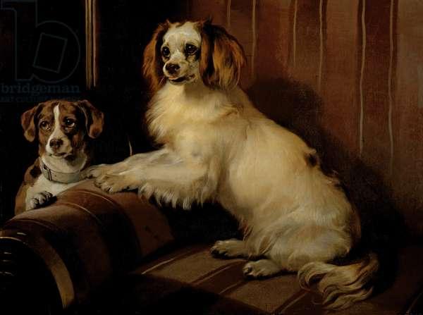 Bon(e)y and Var, c.1843 (oil on canvas)