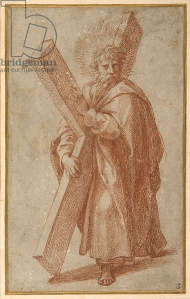 The Twelve Apostles: St. Andrew, 1518-20 (chalk on paper)