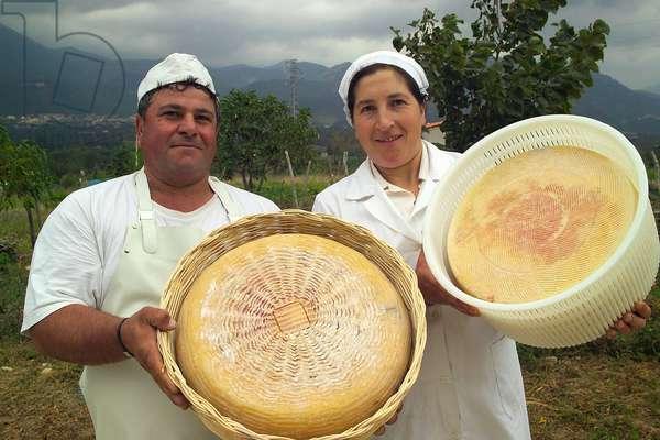 Pecorino Bagnolese cheese, Nigro cheese maker, Bagnoli Irpino, Campania, Italy