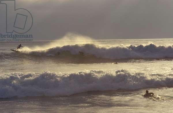 Surf, La Jolla beach, San Diego, California, United States of America, North America