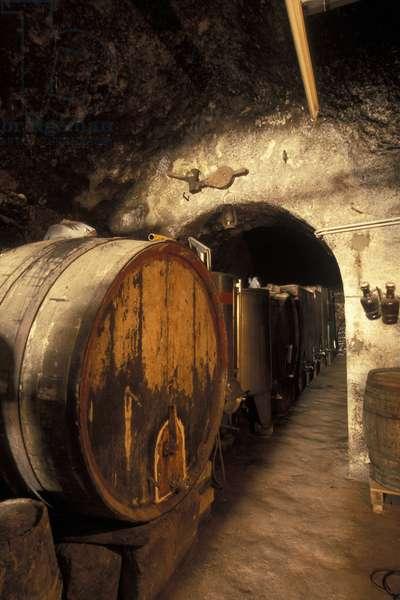 Cellar, Ischia, Campania, Italy.
