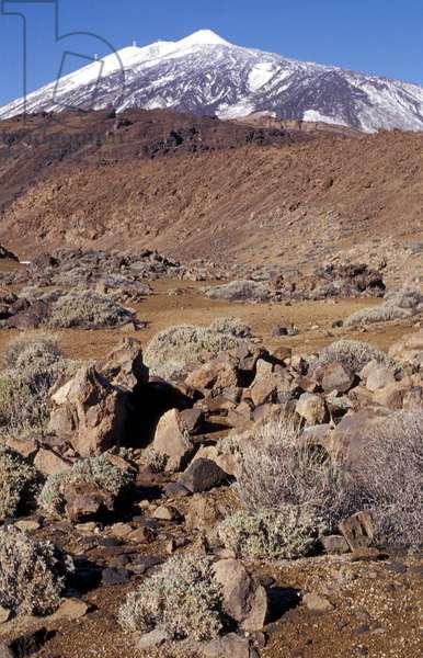Landscape, Pico del Teide natural park, Tenerife, Canary Islands, Spain, Atlantic, Europe