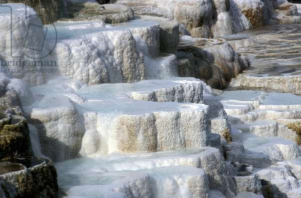 Mammoth, lower terraces, Yellowstone National Park, United States of America, America
