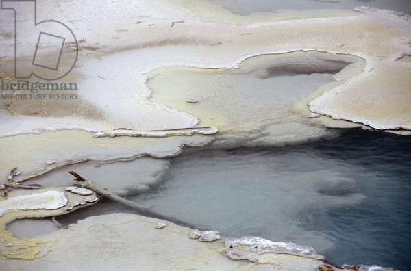 Emeral spring, thermal area, Yellowstone National Park, United States of America, America