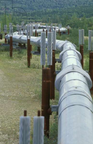 trans alaska pipeline, fairbanks, usa