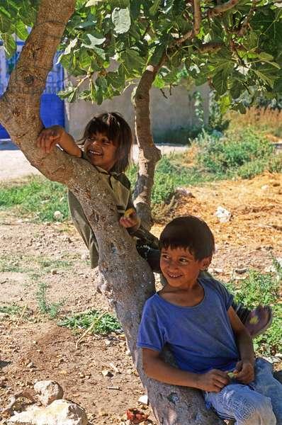 Children, Ajlun, Jordan, Middle East