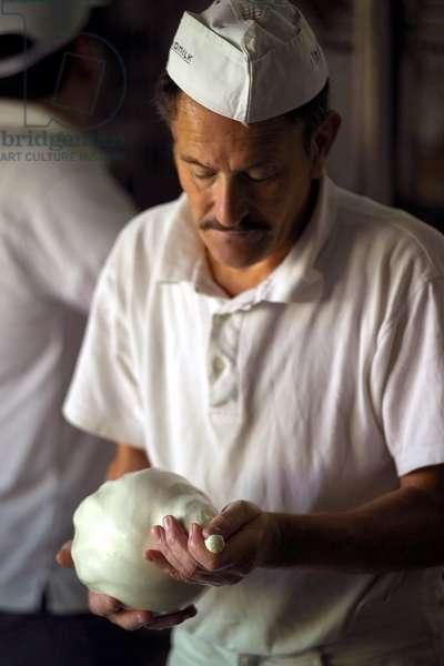 Preparation of Caciocavallo Silano cheese, Gambone cheese maker, Montella, Campania, Italy