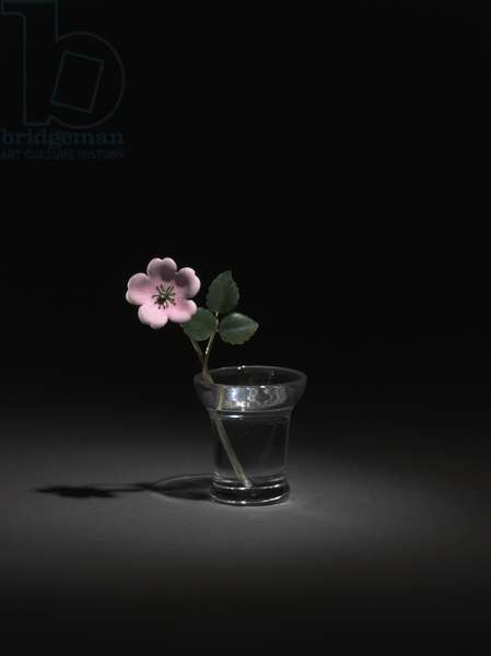 Wild Rose, late 1800s-early 1900s (gold, silver, enamel, diamond, jade, rock crystal)