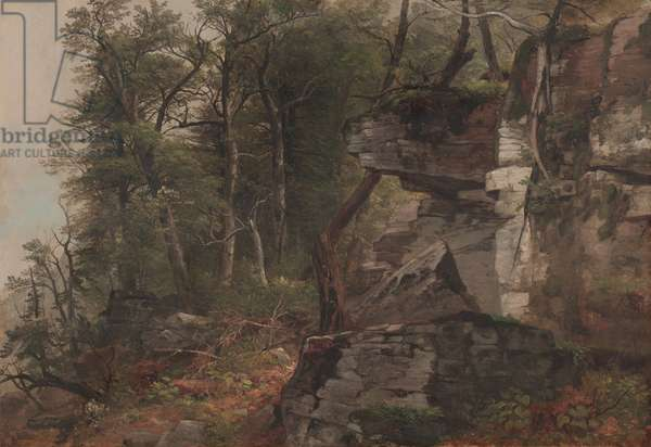 Trees on a Rocky Hillside, c.1849 (oil on canvas)