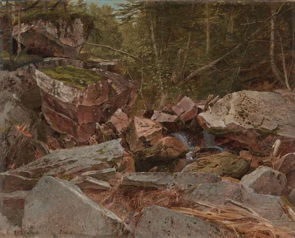 Study, North Conway, New Hampshire, 1851 (oil on canvas)