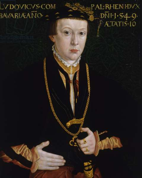 Portrait of Ludwig, Count Palatine, aged 10, 1549 (oil on panel)