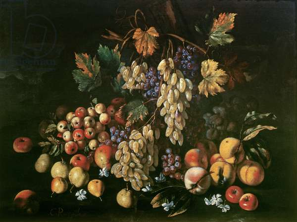 Still Life with Fruit and Mushrooms, c.1700 (oil on canvas)