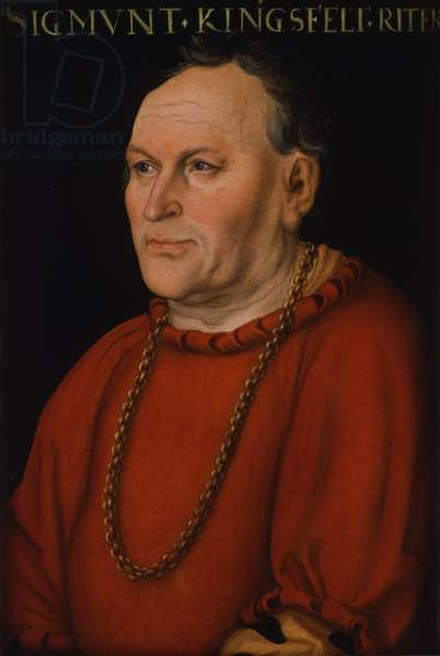 Portrait of Sigmund Kingsfelt, c.1530 (oil on panel)