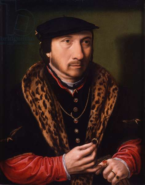 Portrait of a Gentleman, c.1525-45 (oil on panel)
