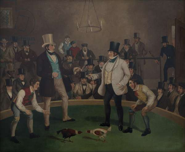 The Cock Fight, c.1850 (oil on canvas)