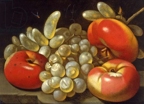 Still Life with Apples, Grapes and a Dragonfly (oil on copper)