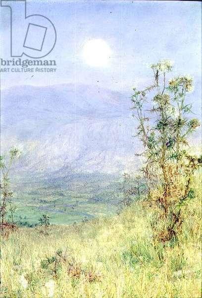 The Idler's Harvest, 1900 (oil on panel)