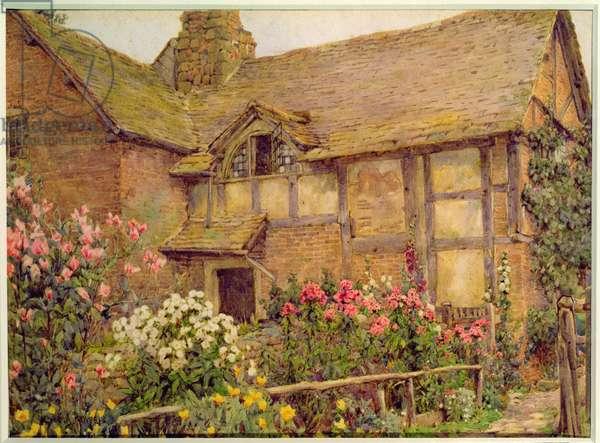 A Cottage garden in Cholstry