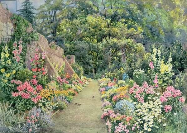 A Summer Herbaceous Border