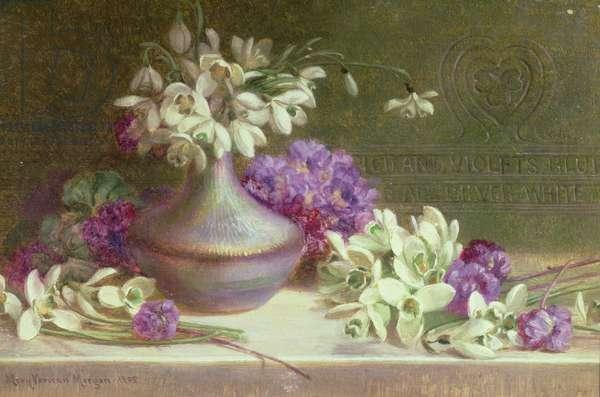 Snowdrops & violets