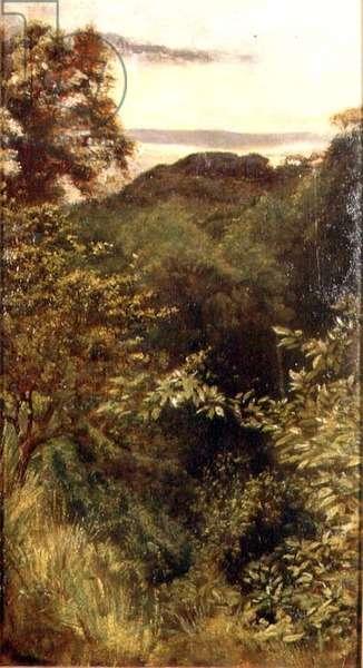 The Glen, Naworth, Cumbria (oil on panel)