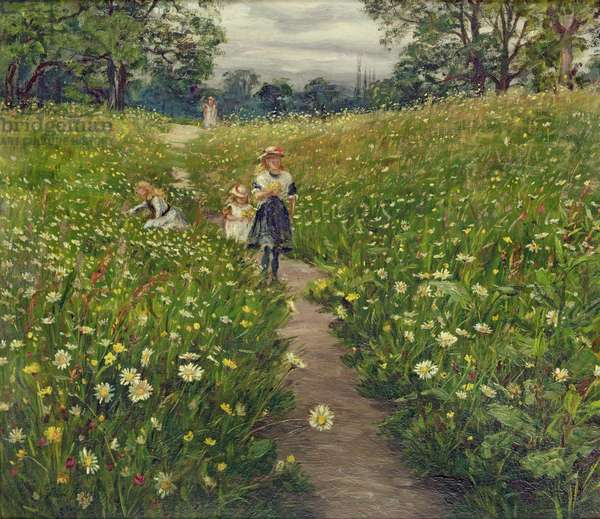 Gathering Wild Flowers (oil on card)