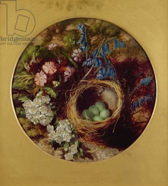 A Still Life with Bird's Nest, Blossom and Bluebells (oil on board)