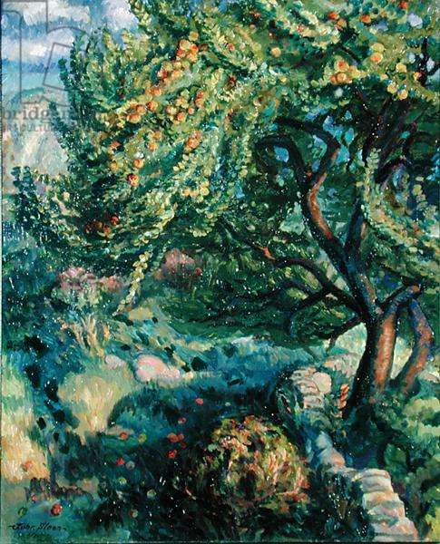 Rock Wall, Orchard, 1916 (oil on canvas)