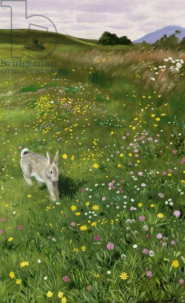 Hare in Spring Flowers