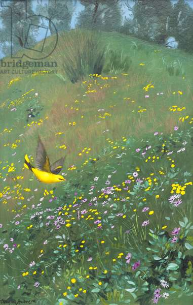 Golden Oriel in Spring Flowers, 1988 (oil on board)