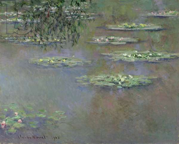Waterlilies, 1903 (oil on canvas)