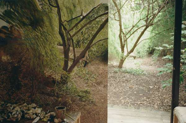 Garden View, 2006 (photo)