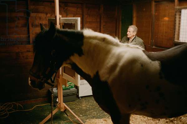 Lucian painting with skewbald mare, 2005 (c-type photo)