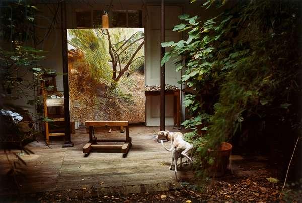 Painter's Garden with Eli, 2006 (c-type photo)