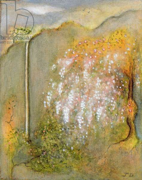 White Whisteria, 2001 (oil on canvas)