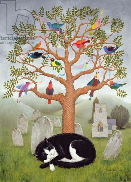 The Church Cats Dream II