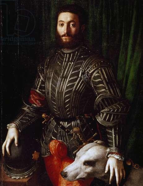 Portrait of Guidobaldo II della Rovere (Urbino, Pesaro-1514, 1574), Duke of Urbino, 16th (oil on canvas)