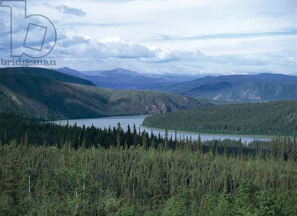 United States of America - Alaska - Dalton Highway; landscape (photo)