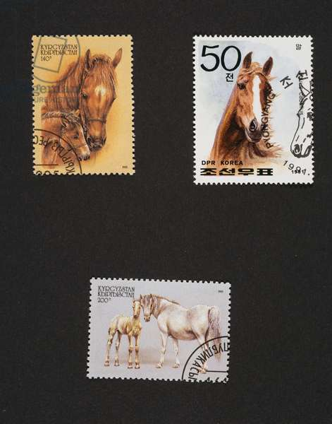 Above left and bottom: postage stamps from Horses series, 1995, depicting mare with foal, Kyrgyzstan, top right: postage stamp from Horses series, 1991, North Korea, Kyrgyzstan and North Korea, 20th century