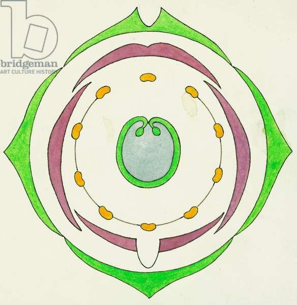 Diagram of Sweet Pea flower (Lathyrus odoratus), cross-section