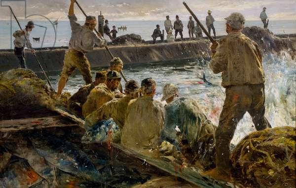 Slaughter of tuna, painting by Antonino Leto (1844-1913)