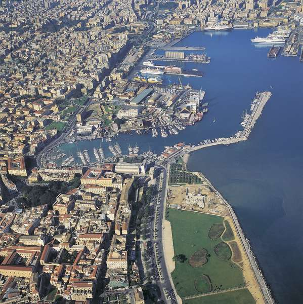 Aerial view of buildings in a city, Palermo, Sicily, Italy (photo)