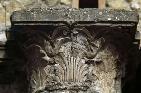 Capital of one of the columns, House of Argus, Herculaneum (UNESCO World Heritage List, 1997), Campania, Italy. Roman civilization, 1st century AD